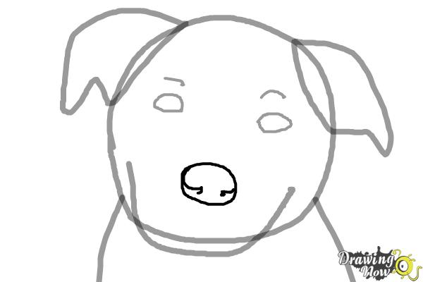 Line Drawing Of A Dog Face : How to draw a dog face drawingnow