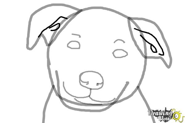 Dog face drawing step by step