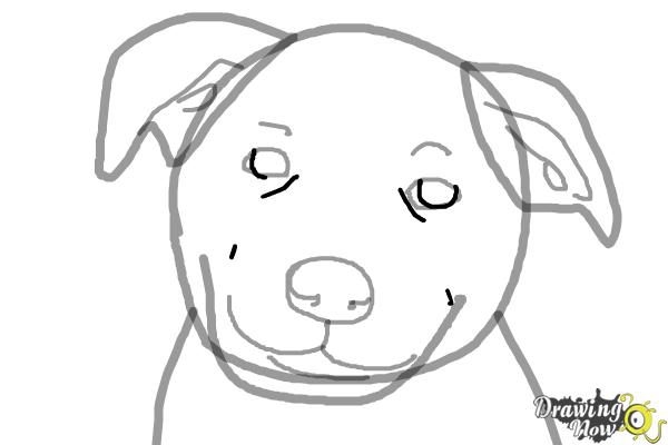 How to Draw a Dog Face - Step 7