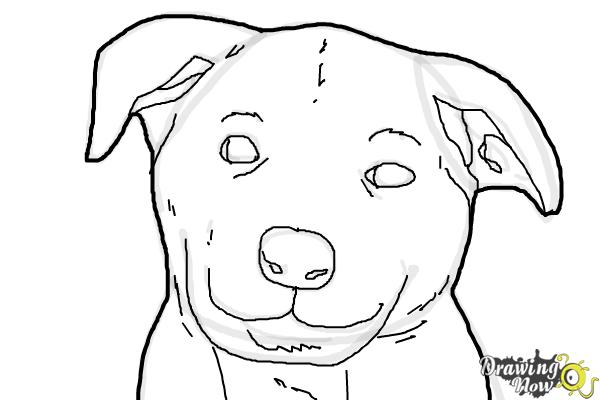 How to draw a dog face step 8