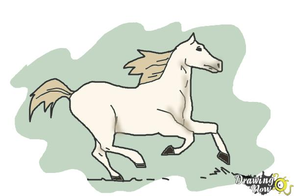 How to Draw a Horse Running - Step 10