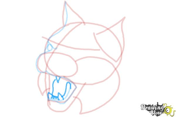 How to Draw a Bobcat - Step 8