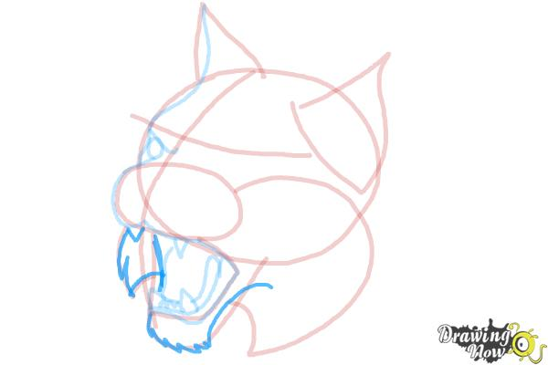 How to Draw a Bobcat - Step 9