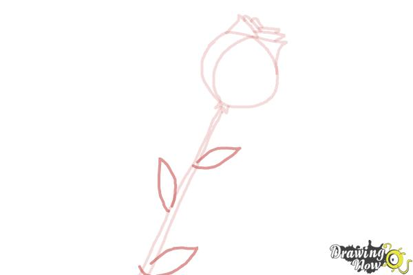 How to Draw a Rose For Kids - Step 5