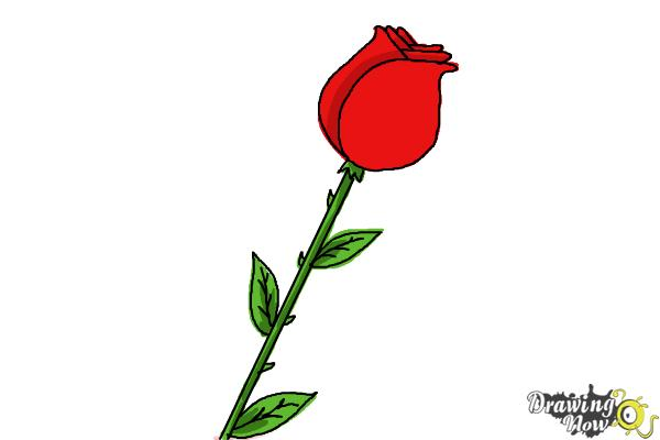 How to draw a rose for kids drawingnow for How to draw a rose step by step for beginners