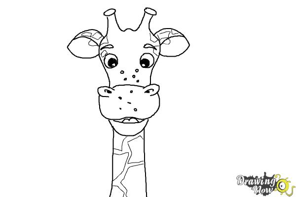 How to Draw a Cartoon Giraffe - Step 8