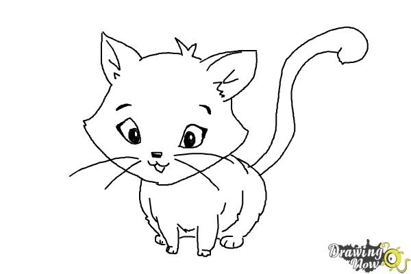 How to Draw a Kitten - Step 15