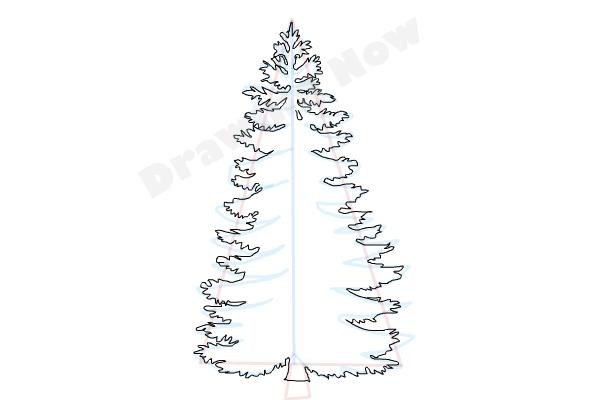 How To Draw A Pine Tree on Triangle Shape Coloring Page