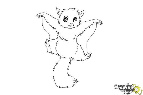 How to Draw a Flying Squirrel - Step 14