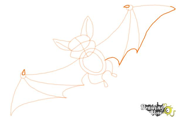 How to Draw a Bat For Kids - Step 8