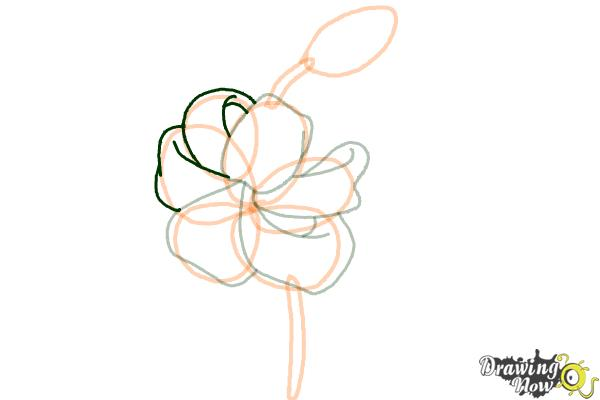 How to Draw a Tiger Lily - Step 6