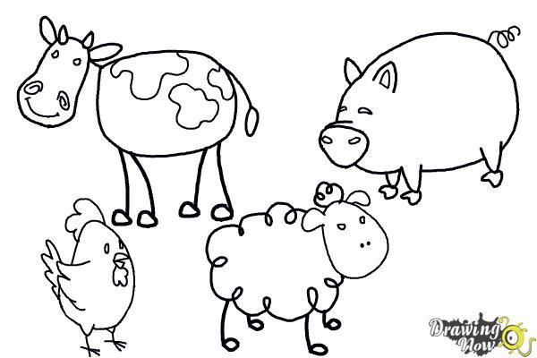 www how to draw animals