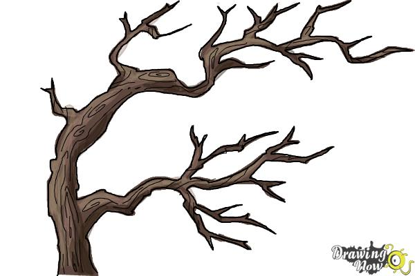 How to Draw Tree Branches - Step 10