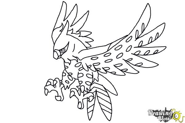 pokemon coloring pages talonflame nicknames - photo#7