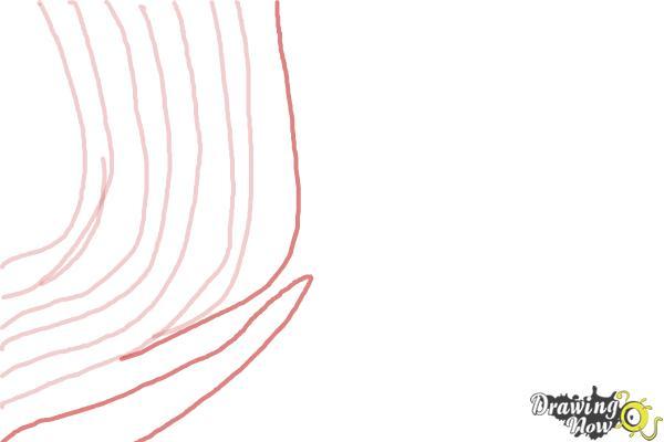 How to Draw Zebra Print - Step 5