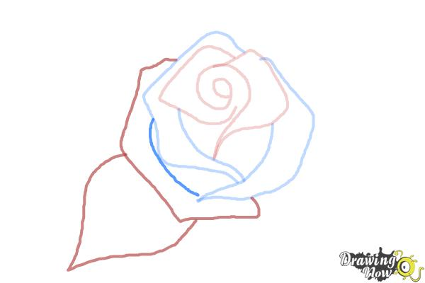 How to Draw a Beautiful Rose - Step 4