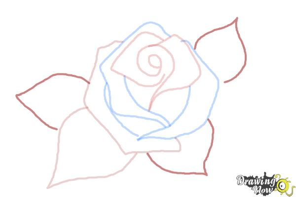 How to Draw a Beautiful Rose - Step 5