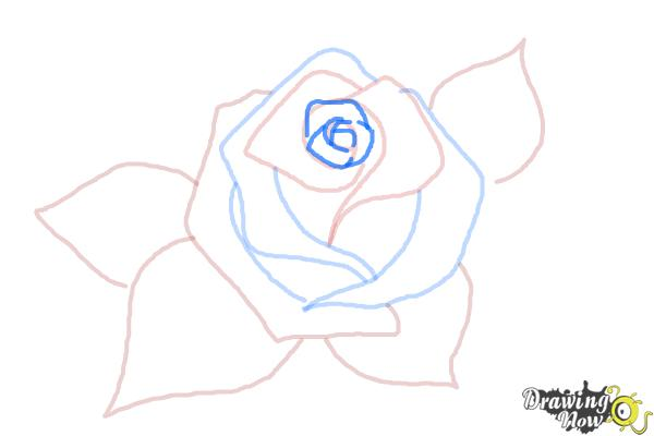 How to Draw a Beautiful Rose - Step 6