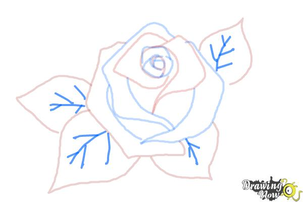 How to Draw a Beautiful Rose - Step 7