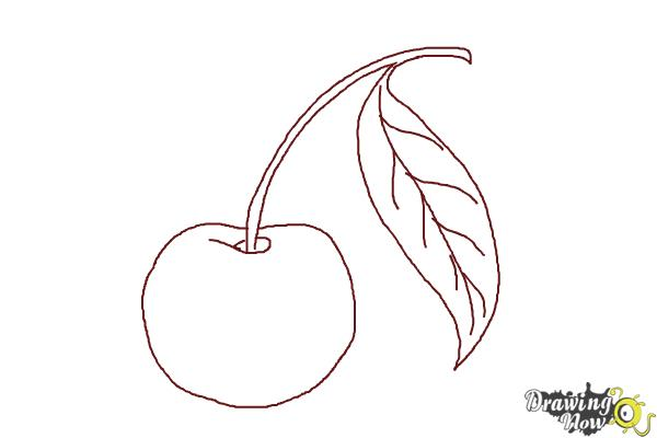 How to Draw a Cherry - Step 6