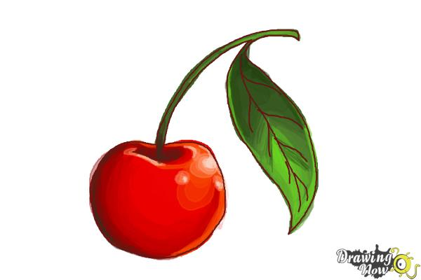 How to Draw a Cherry - Step 7
