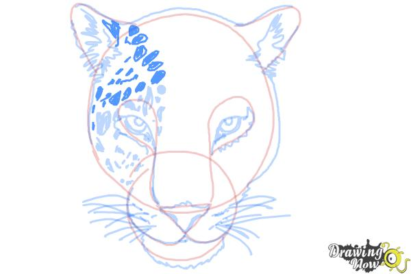 How to Draw a Cheetah Face - Step 12
