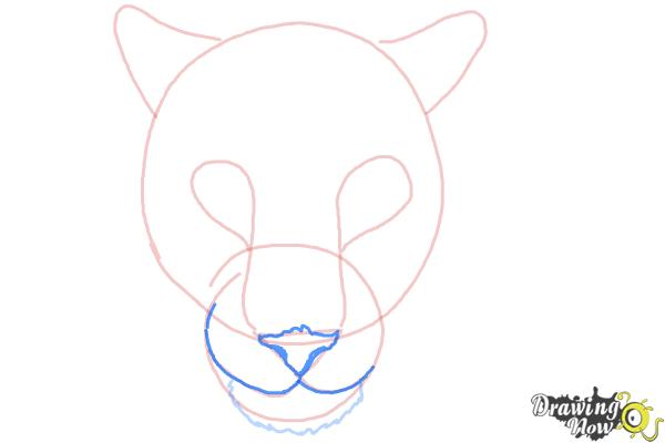 How to Draw a Cheetah Face - Step 6