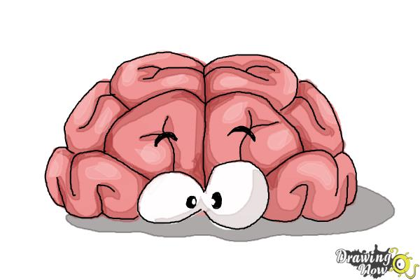 How to Draw a Brain For Kids - Step 11