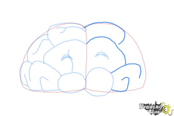 How to Draw a Brain For Kids - Step 8