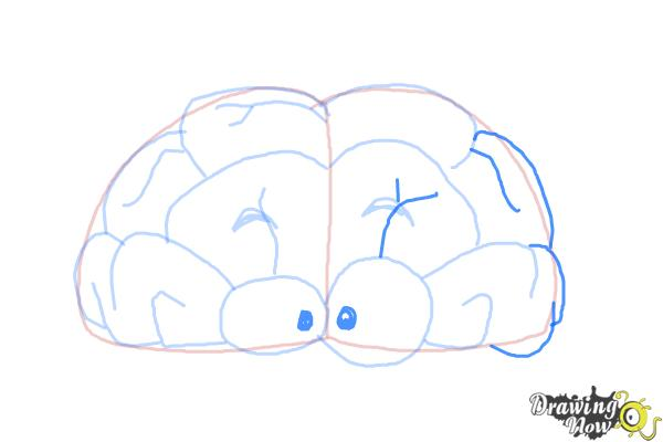 How to Draw a Brain For Kids - Step 9