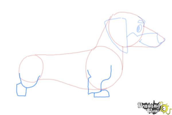 How to Draw a Dachshund - Step 6