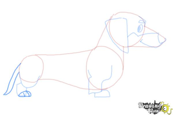 How to Draw a Dachshund - Step 7