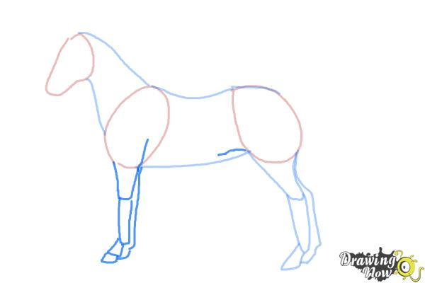 How to draw an easy horse step 4