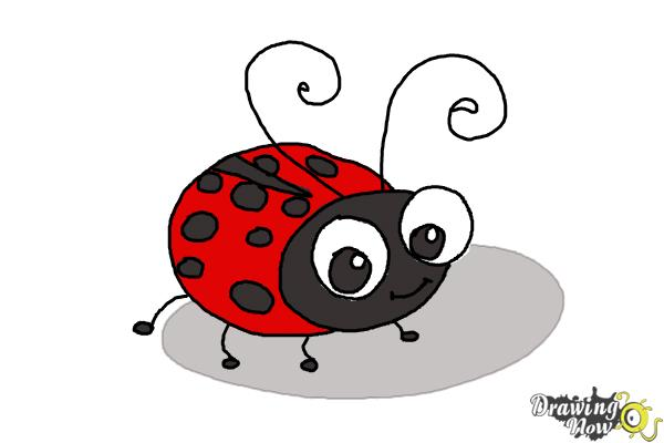 How to Draw a Ladybug For Kids - Step 10