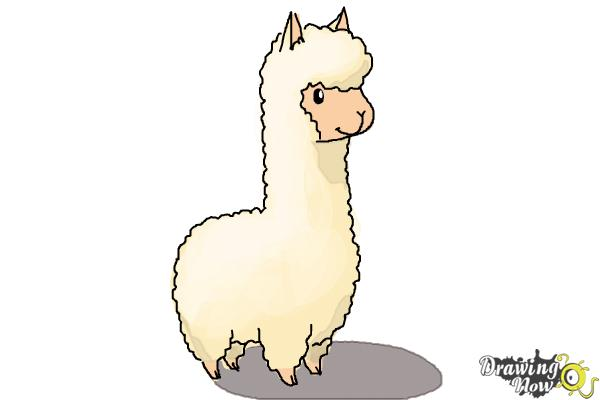 how to draw a llama for kids step 7 - Easy Cartoon Drawing For Kids
