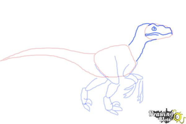 How to Draw a Velociraptor - Step 6