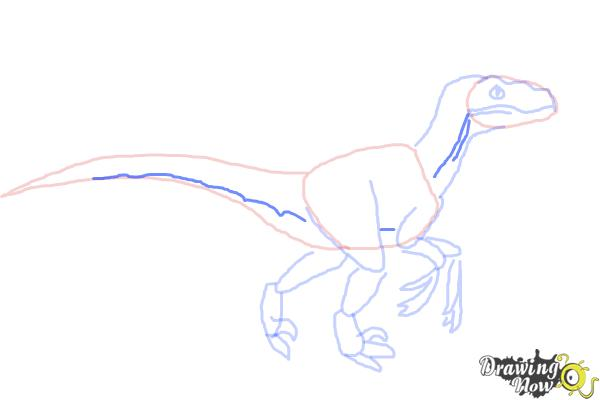 How to Draw a Velociraptor - Step 7