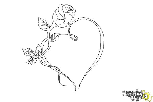 How to draw a rose with a heart drawingnow for How to draw a rose step by step for beginners