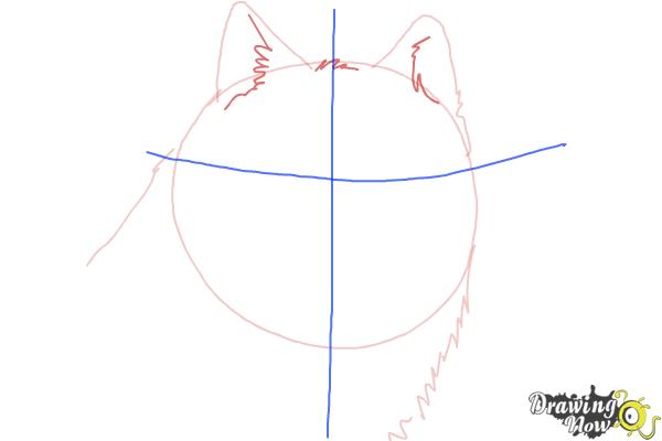 How to Draw a Realistic Wolf - Step 3