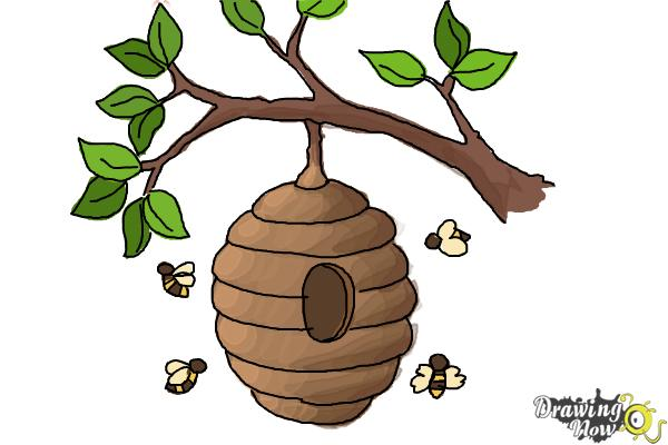 How to Draw a Beehive - Step 10