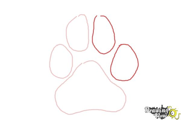 How to Draw a Paw Print - Step 3