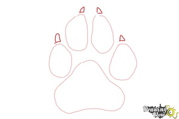 How to Draw a Paw Print - Step 4