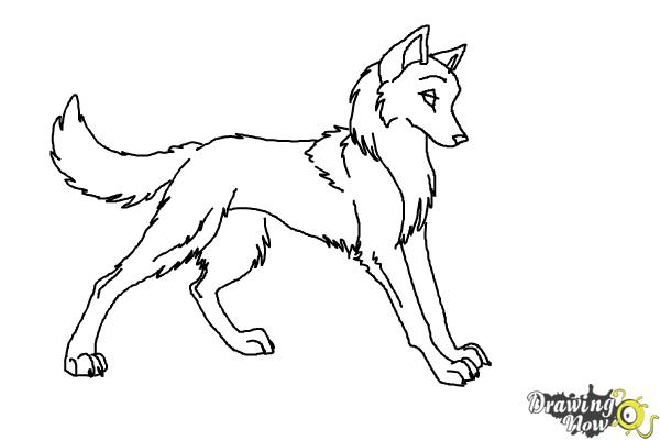 how to draw anime wolves step 9
