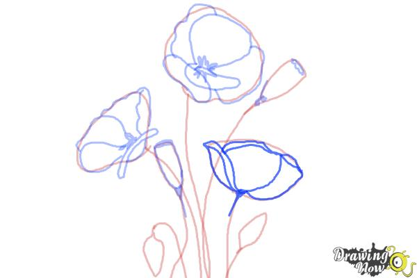 How to draw a poppy drawingnow for Poppy drawing step by step