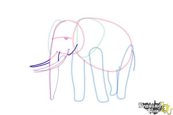 How to Draw Elephants - Step 10
