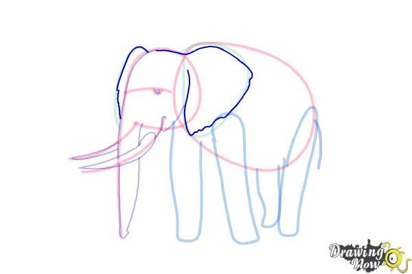 How To Draw Elephants Drawingnow