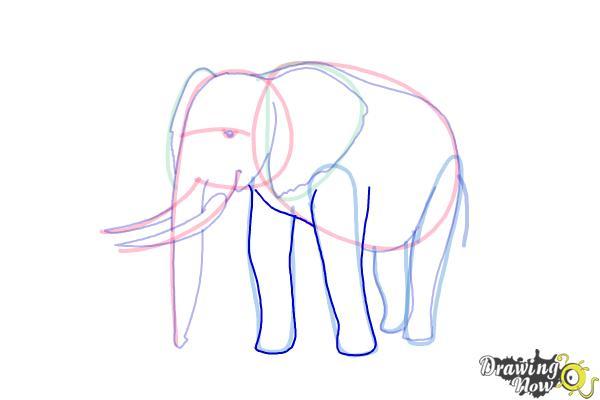 How to Draw Elephants - Step 13
