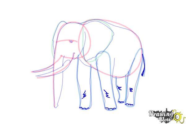 How to Draw Elephants - Step 14