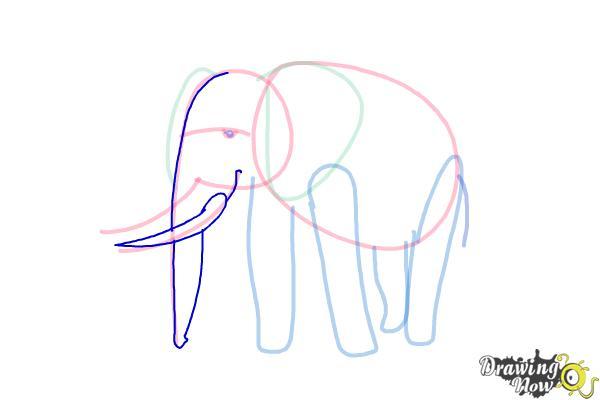 How to Draw Elephants - Step 9