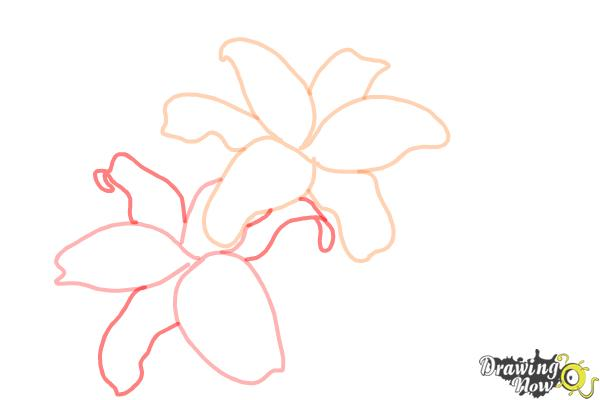 How to Draw Lillies - Step 4